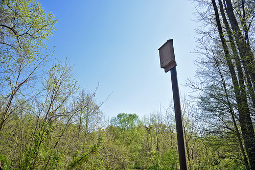 Bat house along Rocky Branch Trail between Derr Track and Western Blvd.