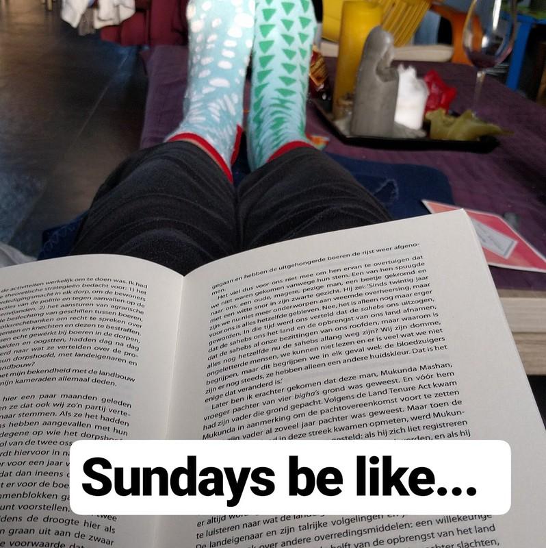 gelezen