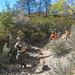 Lake Arrowhead Search - Oct. 03, 2013