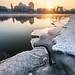 Sunrise at frozen Odra River, Wrocław by PiotrHalka