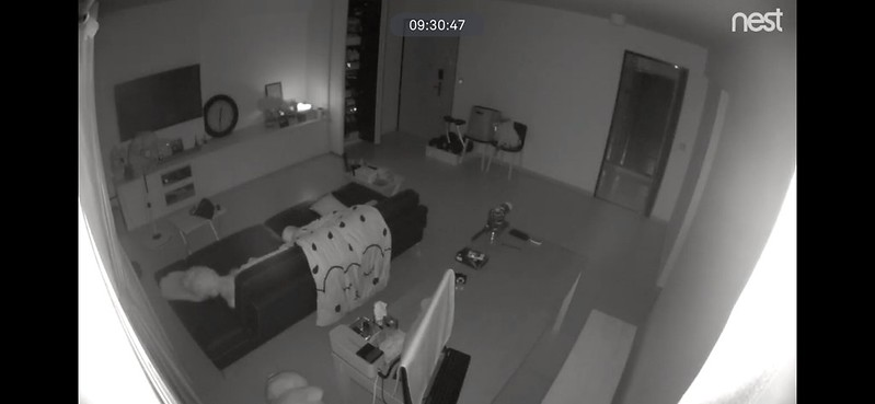 Nest Cam IQ Indoor - Night Vision