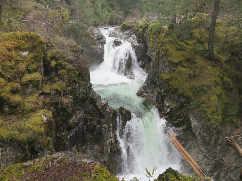 Little Qualicum Falls.