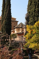 Partal at the Alhambra 18
