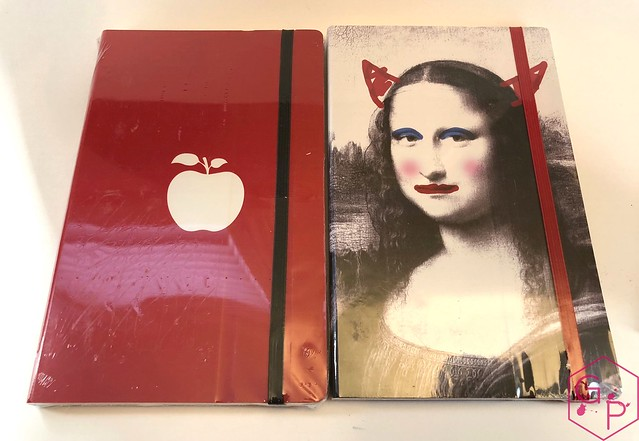 Stifflexible Notebooks from @CarolLuxury 1