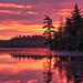 Sunrise over Harry Lake by Darryl Robertson