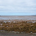 Cumbrian Coast