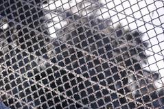 Frosty wire