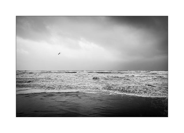 Jour de tempête.