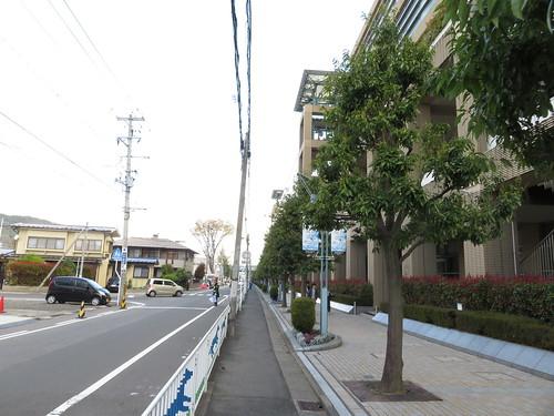 福島競馬場の南口から中央口へ歩く
