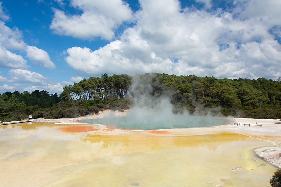 Champagne, Pool, Wai-O-Tapu, geothermal, area, New, Zealand, Waiotapu, Aotearoa, Kaido Rummel