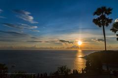 Sunset with Palms at Promthep Cape, Phuket island, Thailand       XOKA6911s