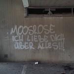 Moosrose ...