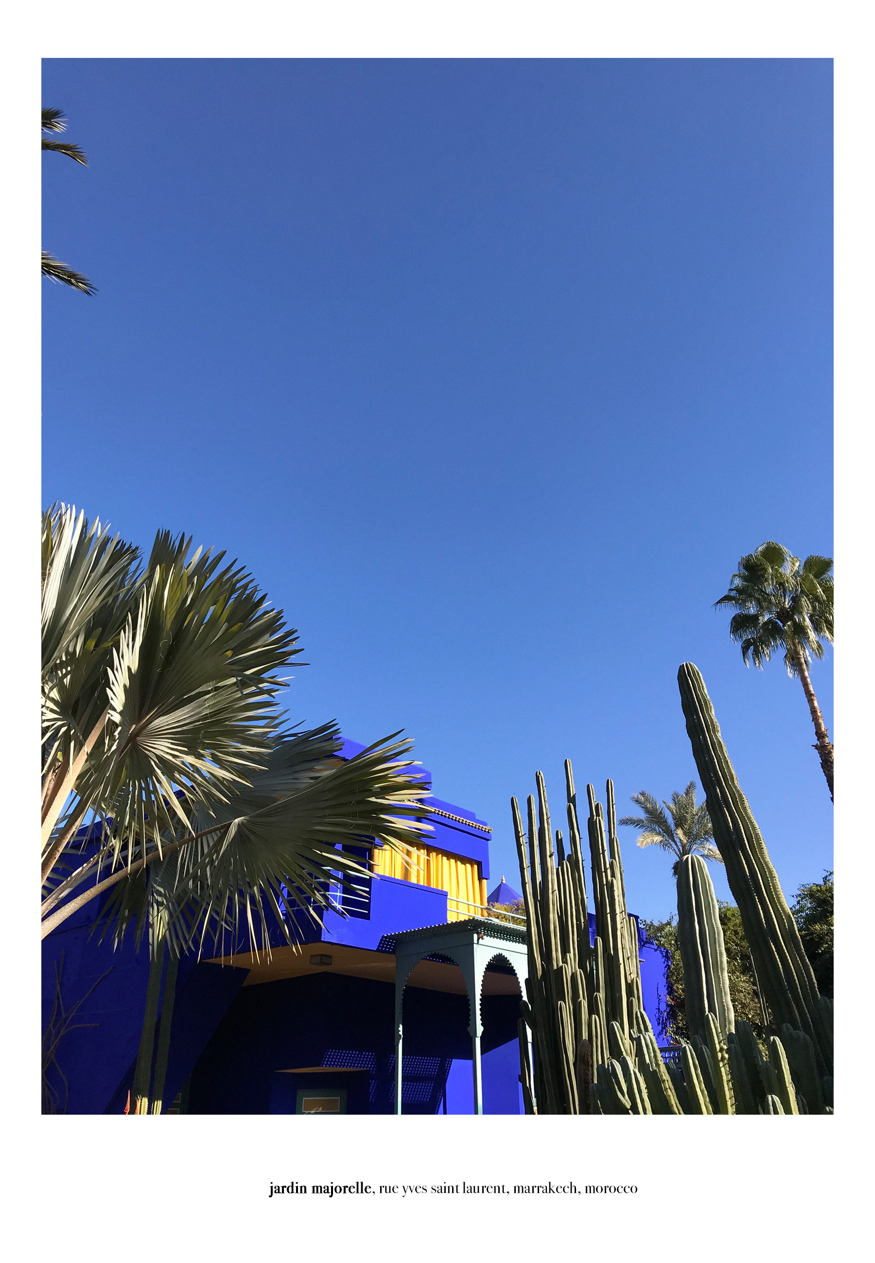 jardin majorelle yves saint laurent pierre bergé architecture musée museum morocco marrakech marrakesch travel travelblogger travelbloggers reiseblog reiseblogger reisebloggen inspiration blau bleu blue catsanddogsblog ricarda schernus max bechmann 7