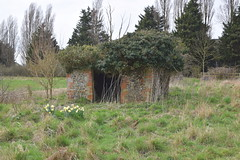 derelict stable