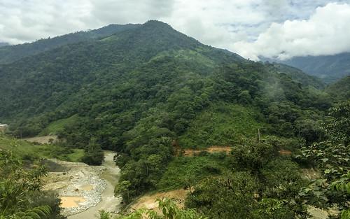 zamora provinciadezamorachinchipe ecuador orchid tour andes mountains mountain plant plants flower orchids