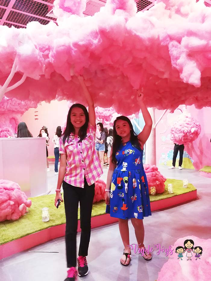 the-dessert-museum-cotton-candy-2