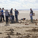 2016-09-23 11-44-16-small-WKirby