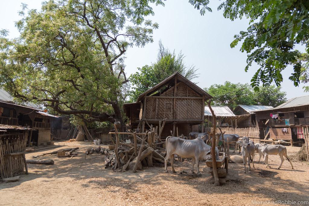 Myanmar-20180323-1187