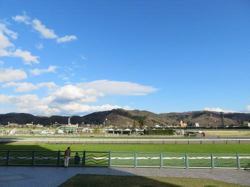 福島競馬場の風景