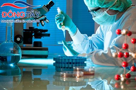 Liệu pháp gen điều trị rối loạn nhịp tim sau nhồi máu cơ tim