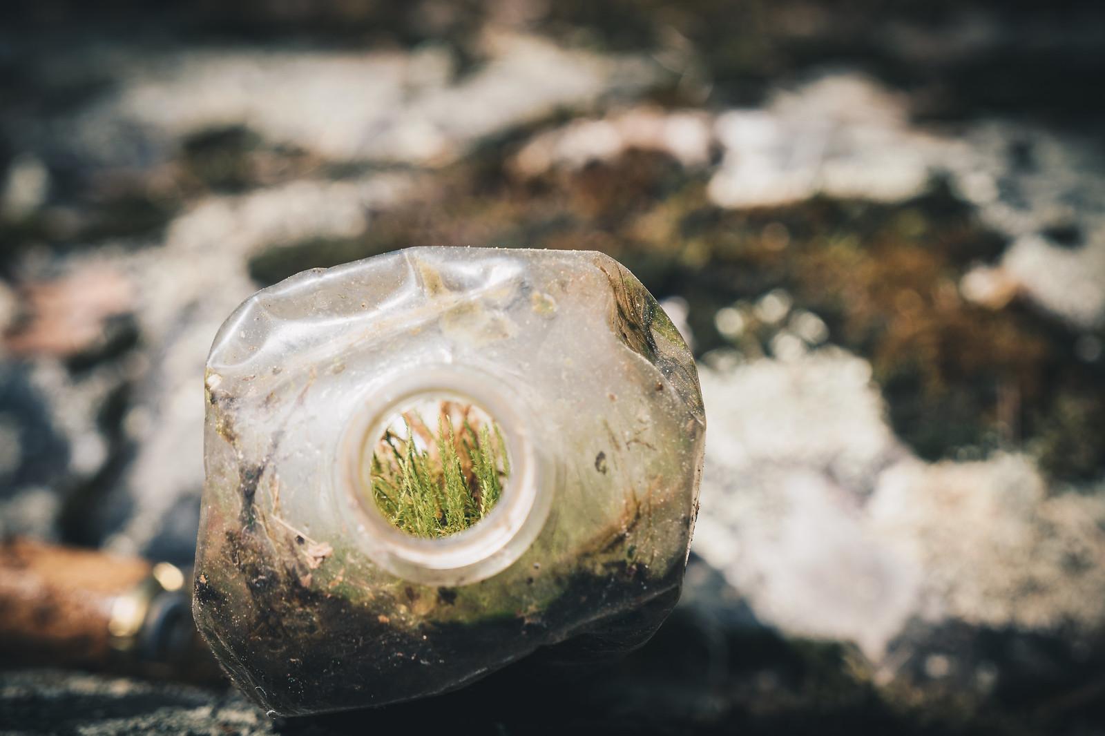 Tämä muovipullo oli hetken jo viettänyt aikaansa luonnossa sammaleesta päätellen.