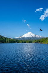 View of Mt. Hood from Trillium Lake