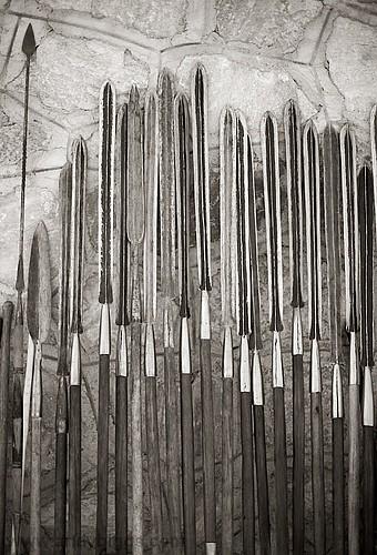 Maasai spears   Andy Biggs   Flickr