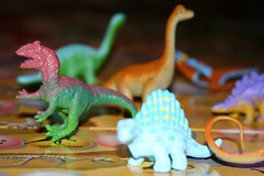 reptile(0.0), dragon(0.0), velociraptor(1.0), macro photography(1.0), dinosaur(1.0), toy(1.0),