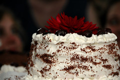 cake(1.0), flower(1.0), buttercream(1.0), chocolate cake(1.0), sweetness(1.0), black forest cake(1.0), baked goods(1.0), whipped cream(1.0), food(1.0), cake decorating(1.0), icing(1.0), torte(1.0), wedding cake(1.0), cuisine(1.0),