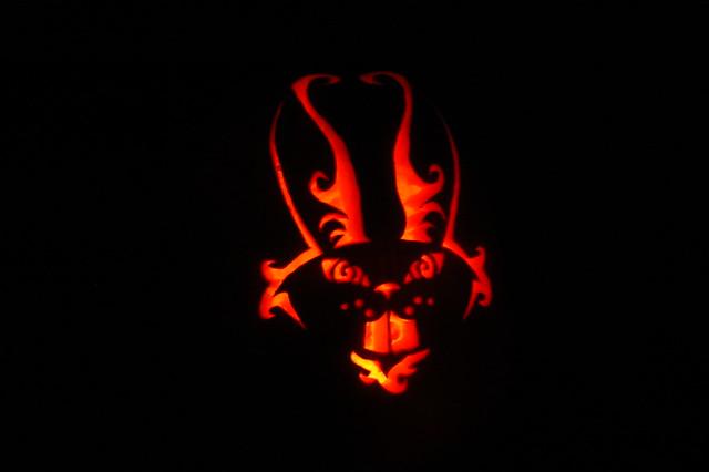 Pumpkin bunny flickr photo sharing