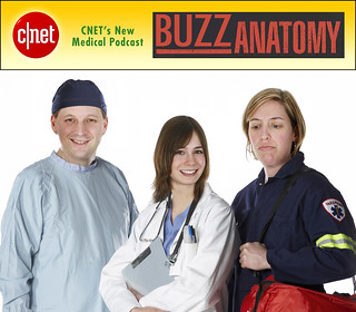 buzz_anatomy