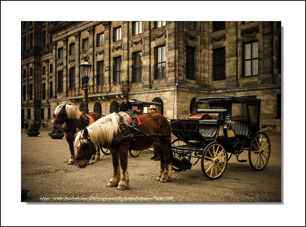 Amsterdam +1 27282636868_c2506ab854_o