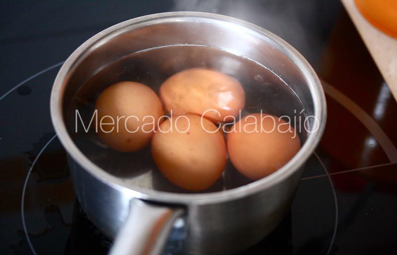 CASCAFLOTE DE MARMOLEJO01