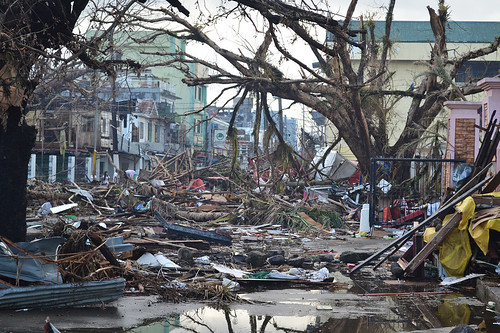 Losses after Hurricane Hayan