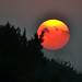 Hazy sunset over Farnham