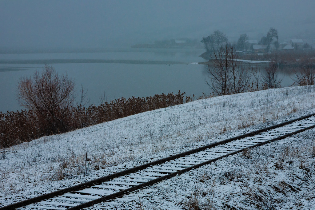Train tracks by lakeshore