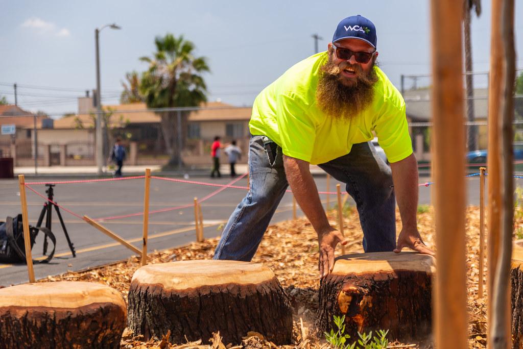 Vena log delivery