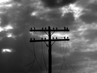 В Селивановском районе 29 населенных пунктов остались без света