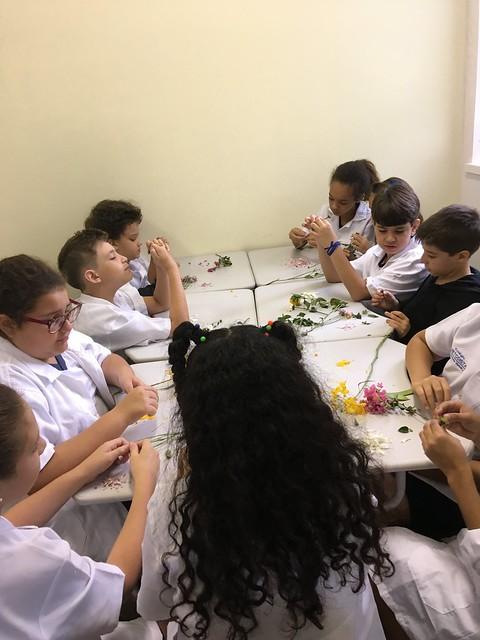 Atividade com plantas - 4º EFI - Colégio - 2018