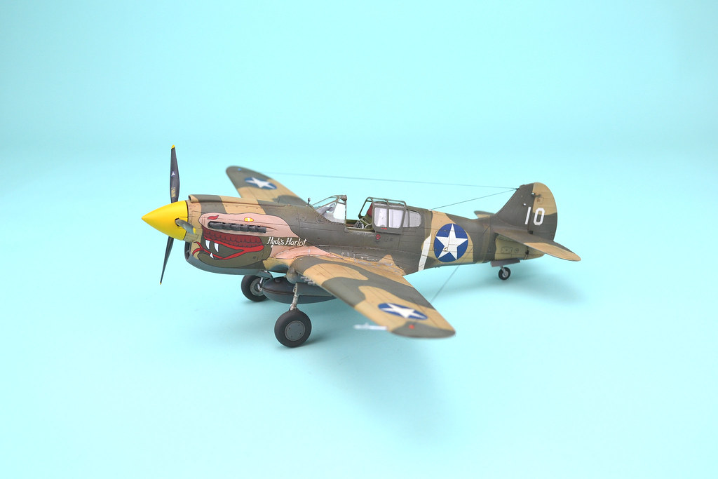 Snakes on a Plane   1/48 Curtiss P-40K Warhawk 78th FS USAAF