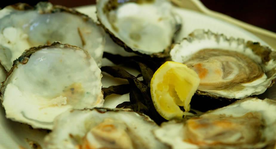 Zien en doen in Galway Ierland, oesters proeven in Galway | Mooistestedentrips.nl