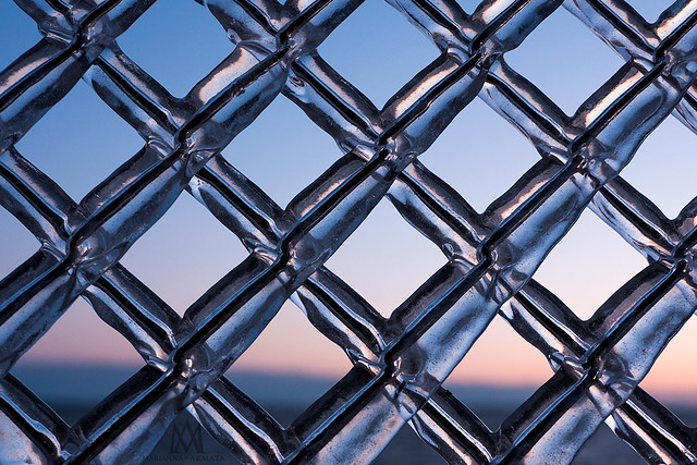iced chainlink fence