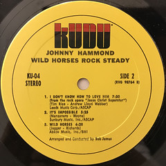 JOHNNY HAMMOND:WILD HORSES ROCK STEADY(LABEL SIDE-B)