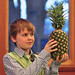 A Pineapple at the Seder?