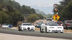 Bugs and Porsches.
