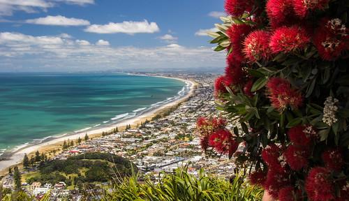 2016 landscape newzealand