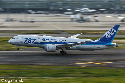 LR-7976.jpg