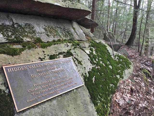 Hidden Valley Memorial Forest