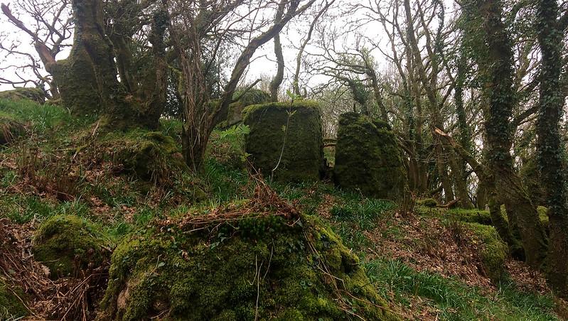 Castor North-East Rocks