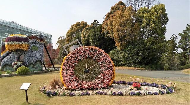 濱松花卉主題公園 (11)